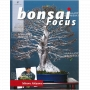 Bonsai focus magazine 97