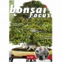 bonsai-focus-n-104