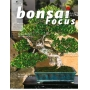 Bonsai focus 81