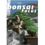 BONSAI FOCUS N° 83