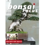 BONSAI FOCUS N° 95